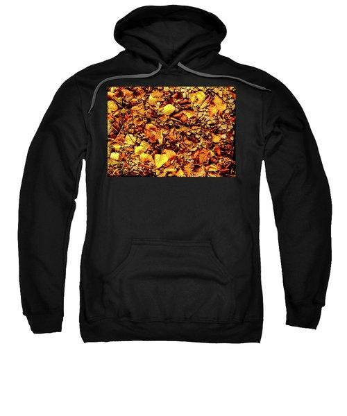 Colours. Autumn Gold Sweatshirt