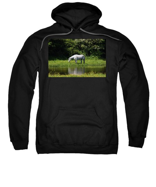 Cumbria. Ulverston. Horse By The Canal Sweatshirt