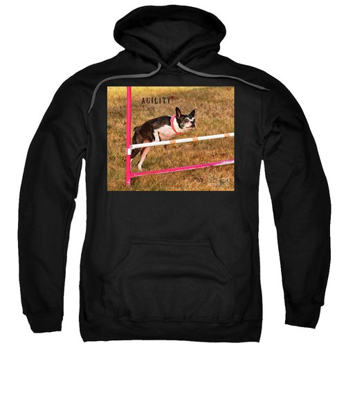 Doggie Agility  Sweatshirt