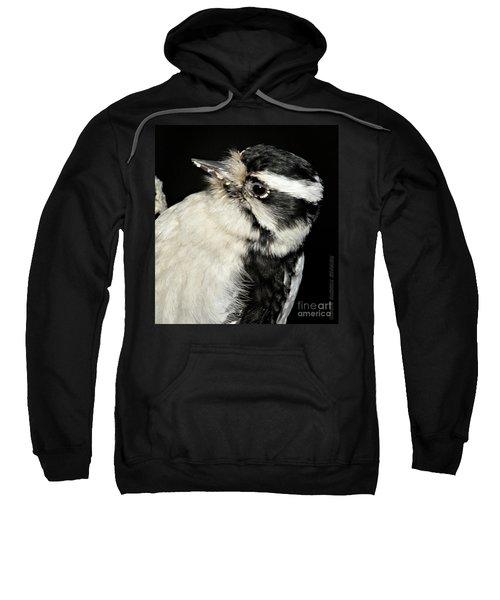 Downy Woodpecker Female Sweatshirt