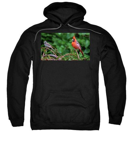 Envy - Northern Cardinal Regal Sweatshirt
