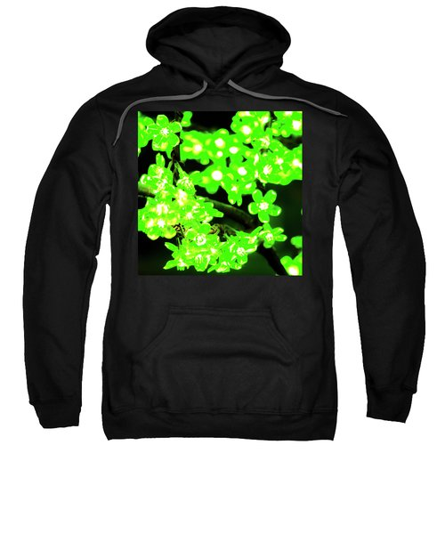 Flower Lights 7 Sweatshirt