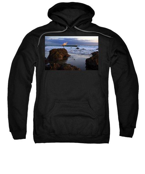 Giant Egret Sweatshirt