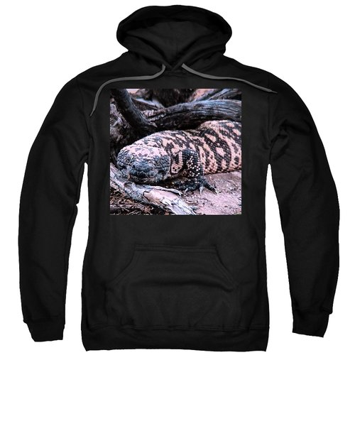 Gila Monster Under Creosote Bush Sweatshirt