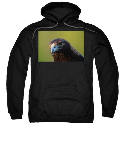 Golden Eagle 5151802 Sweatshirt