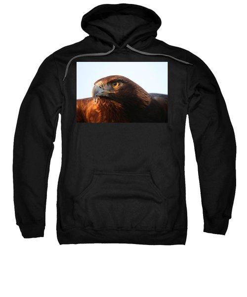 Golden Eagle 5151803 Sweatshirt