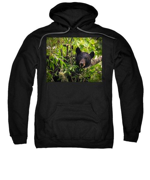 Great Smoky Mountains Bear - Black Bear Sweatshirt