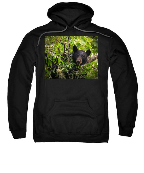 Great Smoky Mountains Bear - Black Bear Sweatshirt