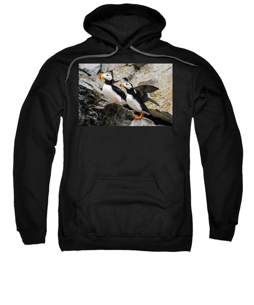 Horned Puffin Pair Sweatshirt