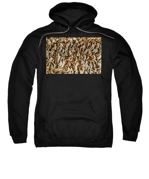 Turkey Tailed Bracket Fungi Sweatshirt