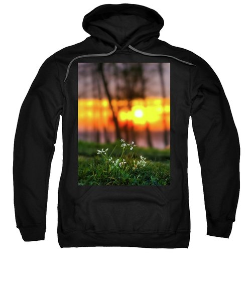 Into Dreams Sweatshirt