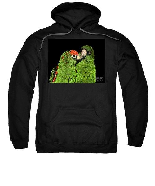 Jardine's Parrots Sweatshirt