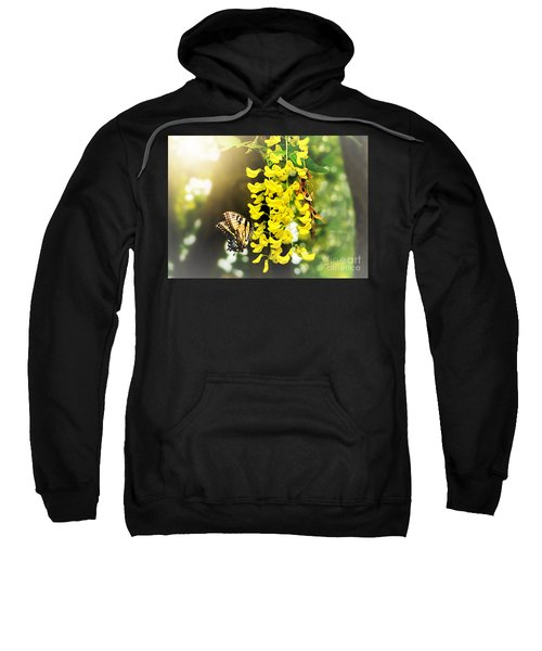 Kissed By The Sun Sweatshirt