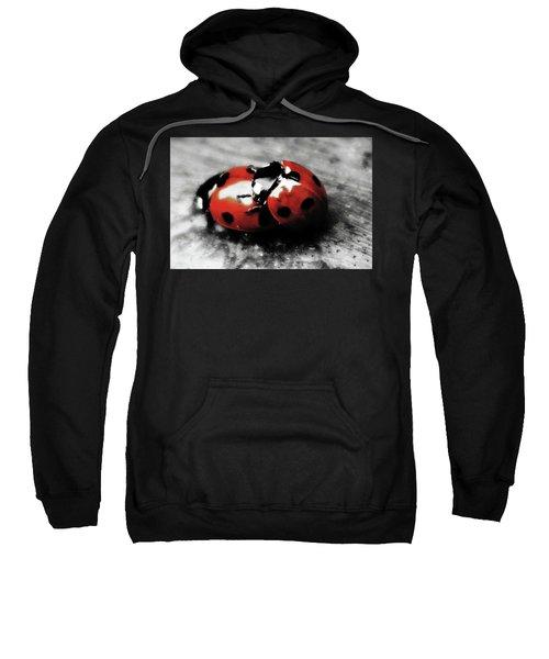 Lady Bug Loving Sweatshirt