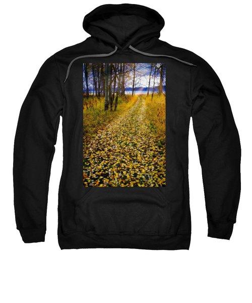 Leaves On Trail Sweatshirt