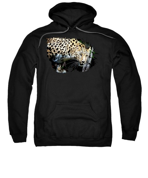 Leopard Canvas Print, Photographic Print, Art Print, Framed Print, Greeting Card, Iphone Case, Sweatshirt
