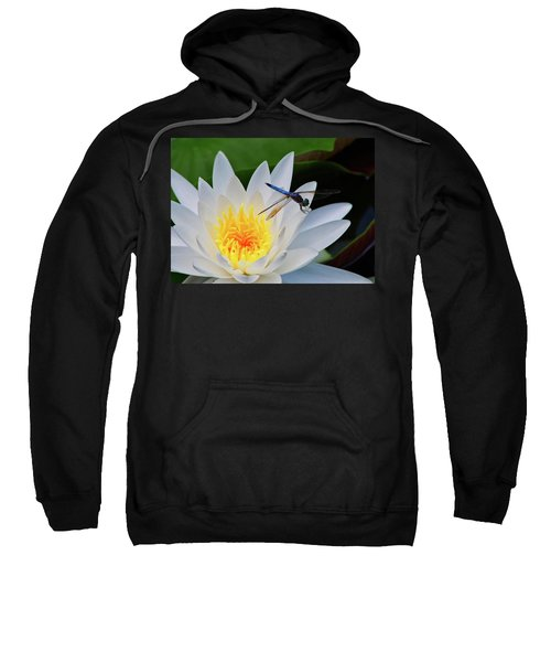 Lily And Dragonfly Sweatshirt