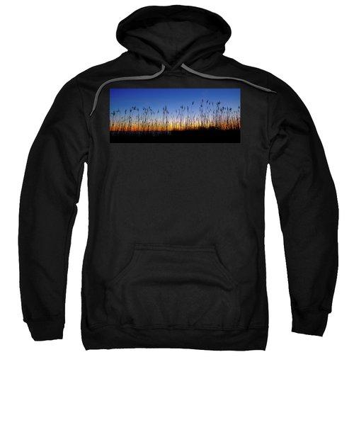 Marsh Grass Silhouette  Sweatshirt