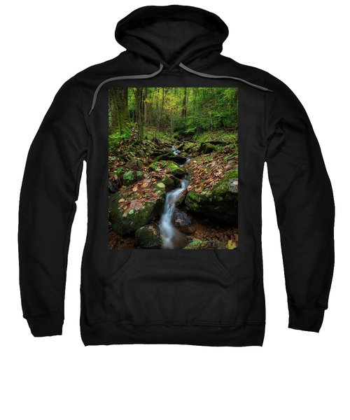 Mountain Stream - Blue Ridge Parkway Sweatshirt