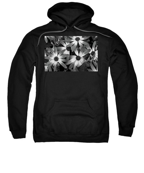 Multiple Daisies Flowers Sweatshirt