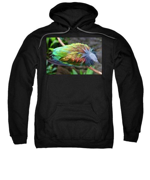 Nicobar Pigeon Sweatshirt