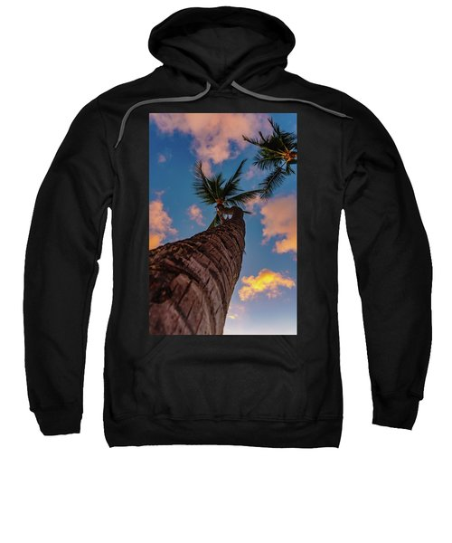 Palm Upward Sweatshirt