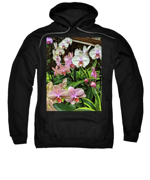 Pink And  White Orchids Sweatshirt