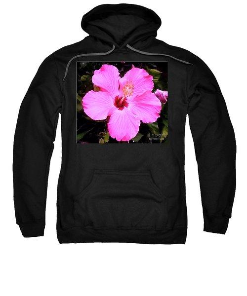 Pink Hibiscus Sweatshirt