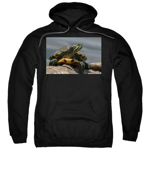 Portrait Of A Turtle Sweatshirt