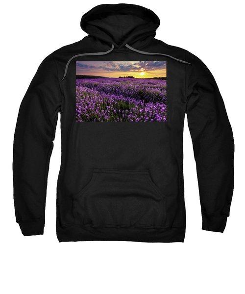 Sweatshirt featuring the photograph Purple Sea by Evgeni Dinev