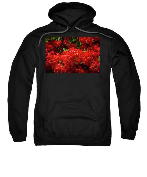 Red Flowers Sweatshirt