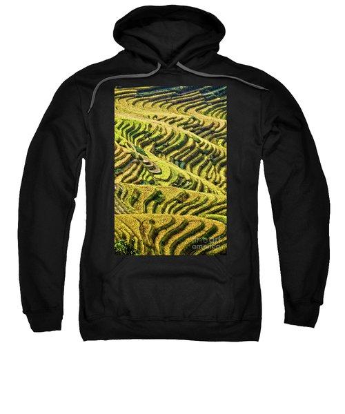 Rice Terraces In China Sweatshirt