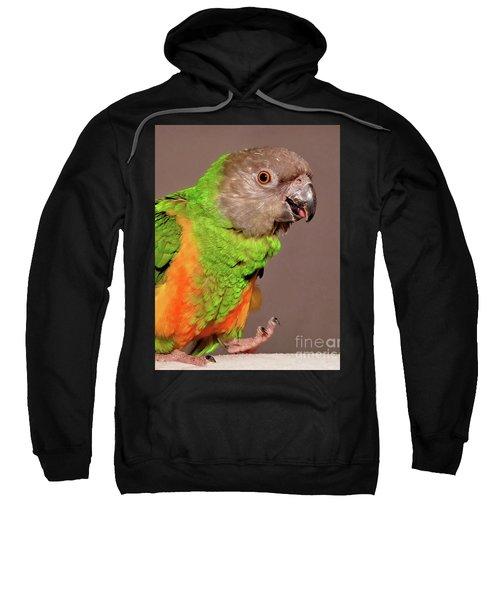 Senegal Parrot Sweatshirt