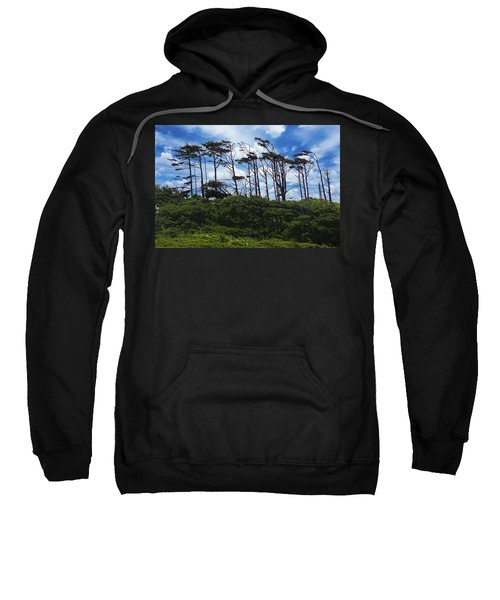Silhouettes Of Wind Sculpted Krumholz Trees  Sweatshirt