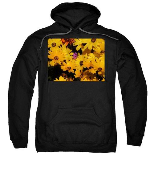 Spring In The Neighborhood Sweatshirt