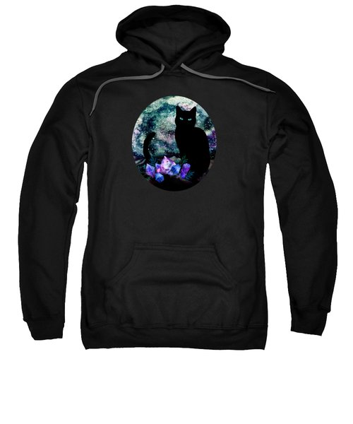 The Cat With Aquamarine Eyes And Celestial Crystals Sweatshirt