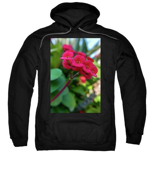 Tiny Red Flowers Sweatshirt