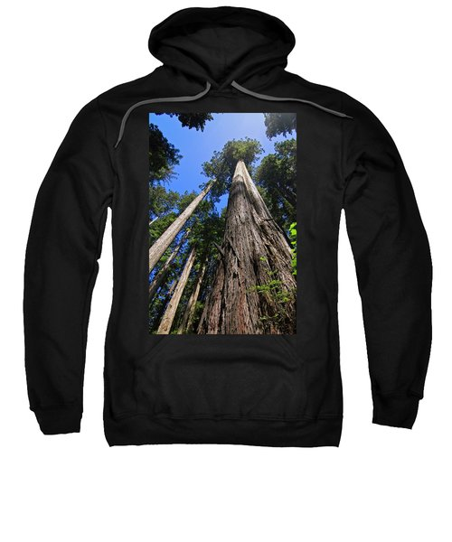 Towering Redwoods Sweatshirt