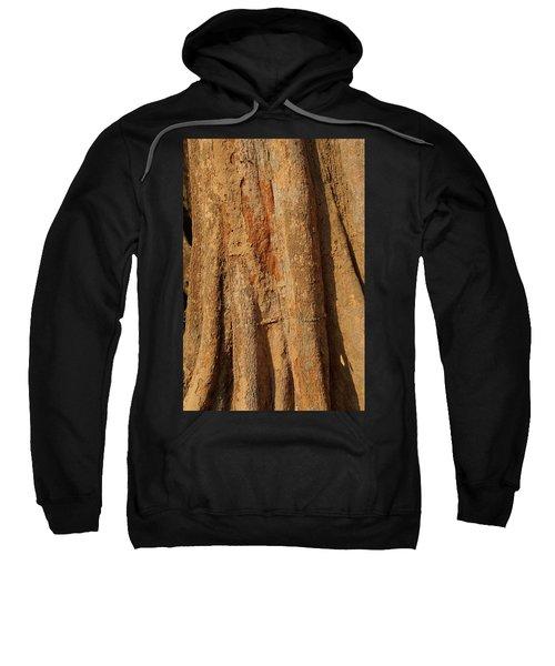Tree Trunk And Bark Of Chambak Sweatshirt