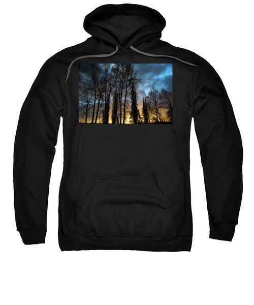 Trees In Blue Hour Sweatshirt