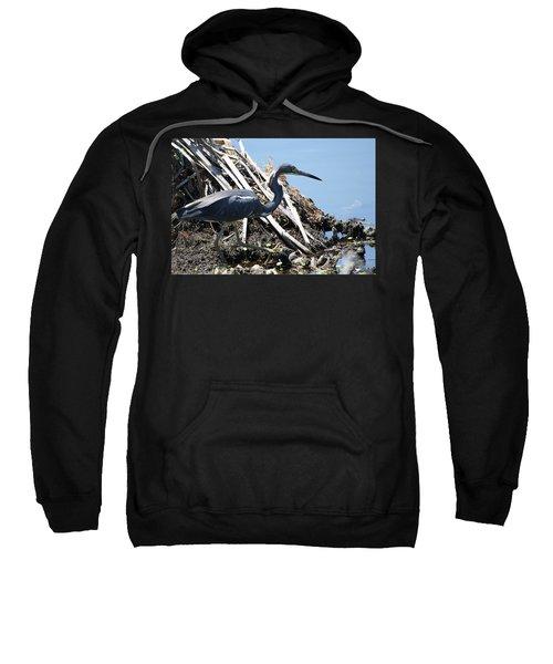 Tri-colored Heron 40312 Sweatshirt