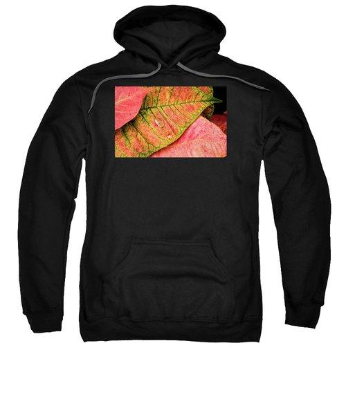 Two Drops Sweatshirt