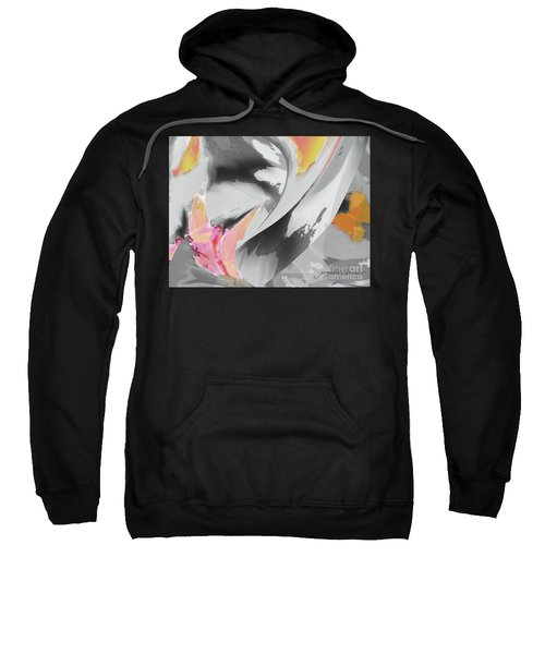 Windy Flight Sweatshirt