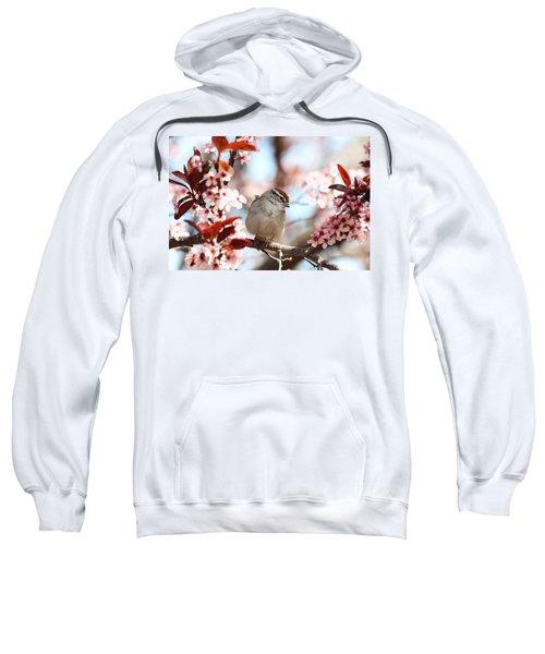 Beautiful Sparrow Sweatshirt