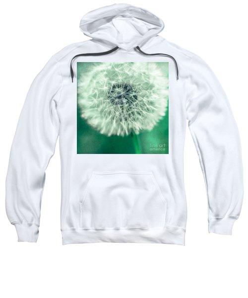 Blowball 1x1 Sweatshirt
