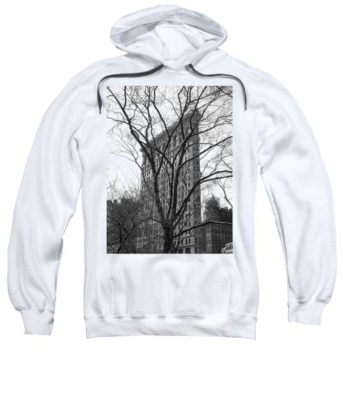 Flat Iron Tree Sweatshirt