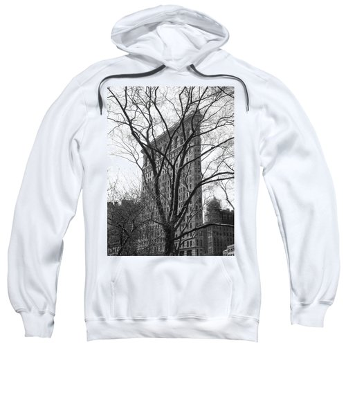 Flat Iron Tree Sweatshirt