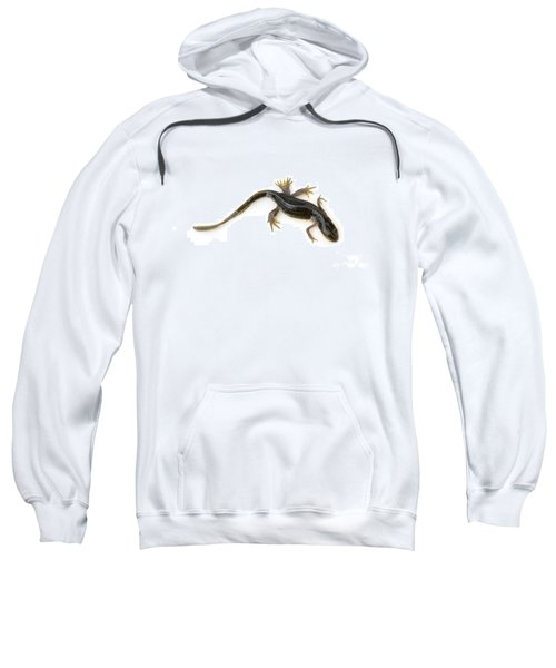 Mutated Eastern Newt Sweatshirt