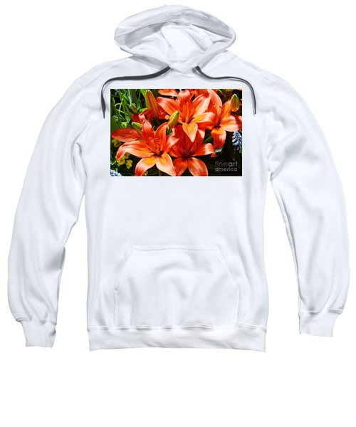 The Color Orange Sweatshirt