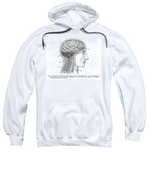 The Human Brain Sweatshirt